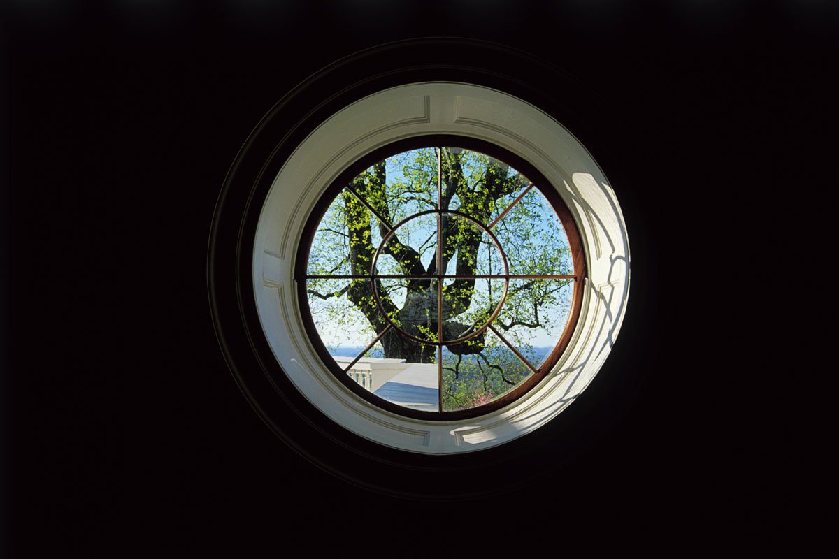 4754-tree-in-round-window-FINAL